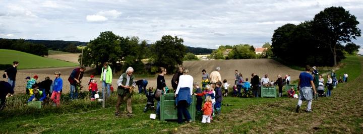 Kinder-Erntedankfest auf dem Biolandhof Kreppold