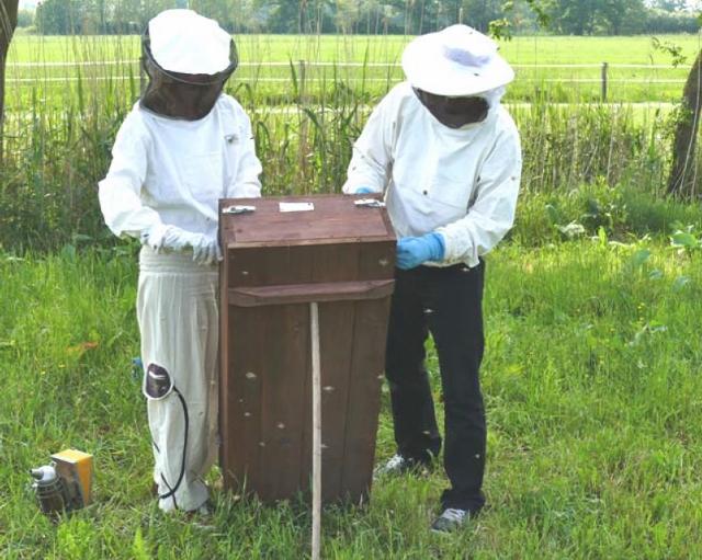 … Imkerin Gabriele Kück und ihrem Partner Basti gaben einen eindrucksvollen Einblick in das Leben der Bienen.