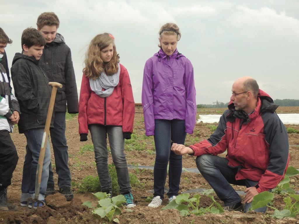 Warum der Regenwurm der Freund des Biobauerns ist, erfahren die Schülerinnen und Schü-ler auf dem Demonstrationsbetrieb Mechtersheim.