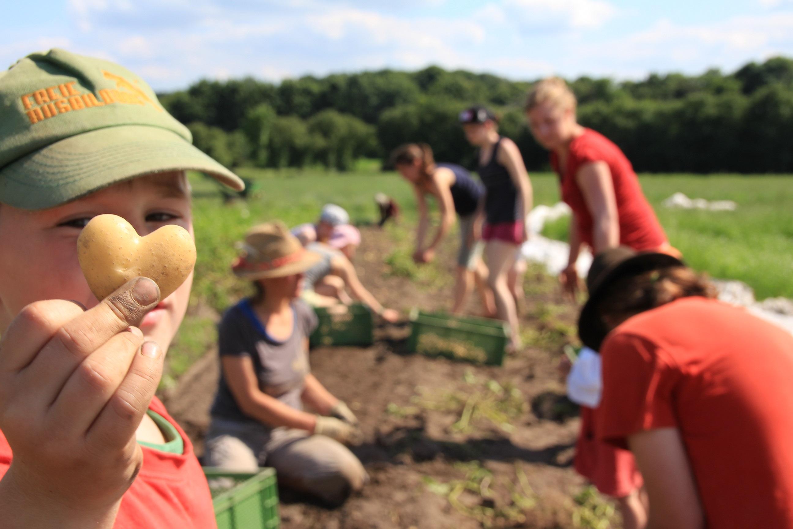 Raus aus dem Klassenzimmer und ab auf den Bauernhof: Lernen an einem außerschulischen Ort ermöglicht Schülern und Schülerinnen einen Praxisbezug.